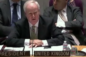 performance of the British representative on the UN Security Council