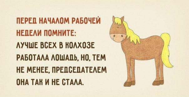 От работы кони дохнут